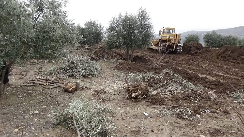 Artêşa Tirkiyê derbasî herêma Efrînê bû