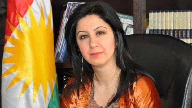 Çinar Seid: Tirkiye li dijî serxwebûna Kurdistanê nîne