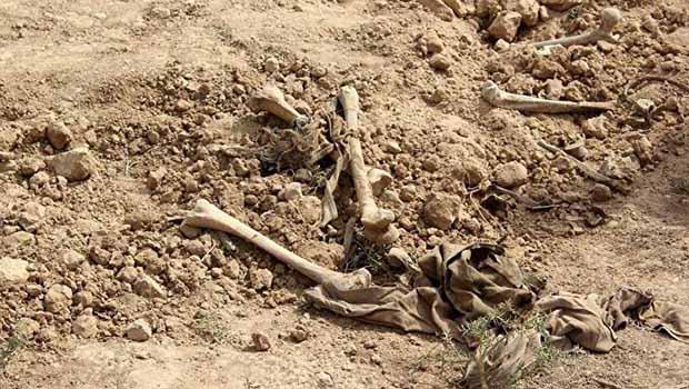 Şengal - Toplu mezar bulundu