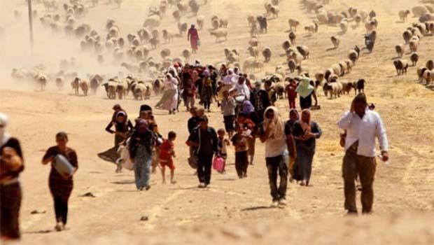 AP: IŞİD'in Ezidilere yönelik katliamları soykırımdır