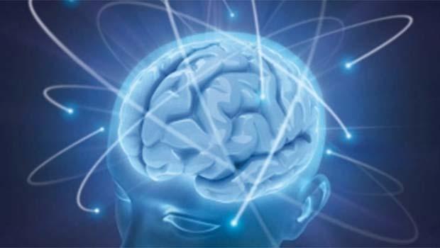 Bilim adamları, beynin gençlik yıllarında en fazla değişime uğrayan bölgelerini belirledi.