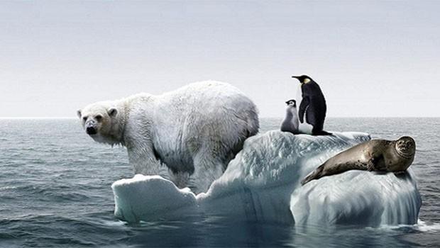 Küresel ısınma insan neslini dünyadan silebilir