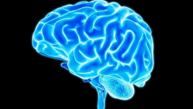 Mikro devre üzerinde beyin hücreleri üretildi