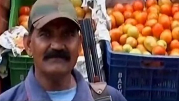 Fiyatı iki katına çıkan domatese silahlı koruma