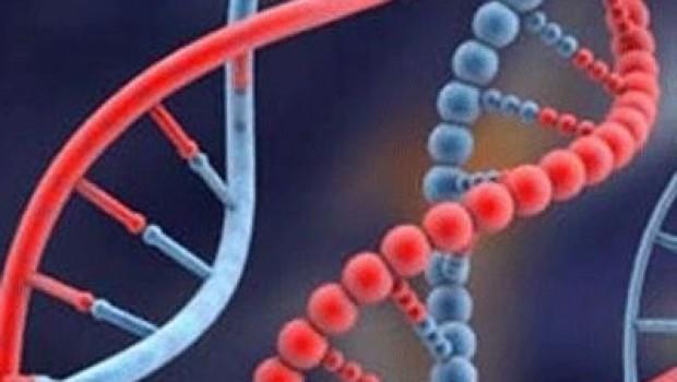 ABD'de lösemiye karşı ilk gen terapisine onay