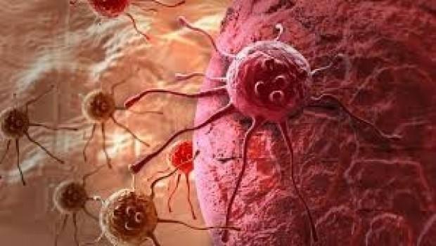Rus bilimciler kanser hücrelerini 'aç bırakarak' yok ettiler'