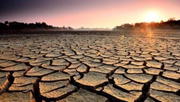 Güney Afrika'da kuraklık nedeniyle ulusal felaket ilan edildi