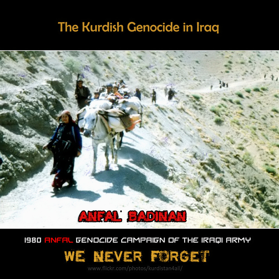 the kurdish genocide in iraq essay Genocide of kurds 21 argues that the poison gas attacks in august 1988 cannot be explained simply as a response to kurdish rebellion or the kurds' role in the iran-iraq war but are better explained as the final phase of a deliberate iraqi plan to remove kurds temporarily from their ancestral lands for economic and strategic reasons.