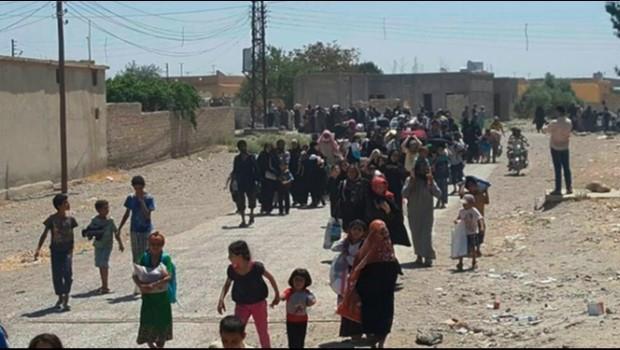QSD: DAÎŞ bicihkirina mayînan diwxaze sivîlan bihêle Reqqa