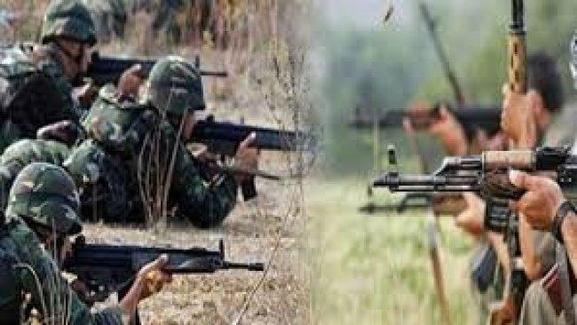 Şerê Tirkiye û PKKê da 5 salan da 5 hezar insan hatîye Kuştin