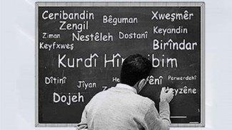 Netewe, bê ziman û bê yekîtîya sîyasî nabe!