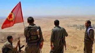 PKK di destê dagirkeran de bûye vîrusek bê derman!!!