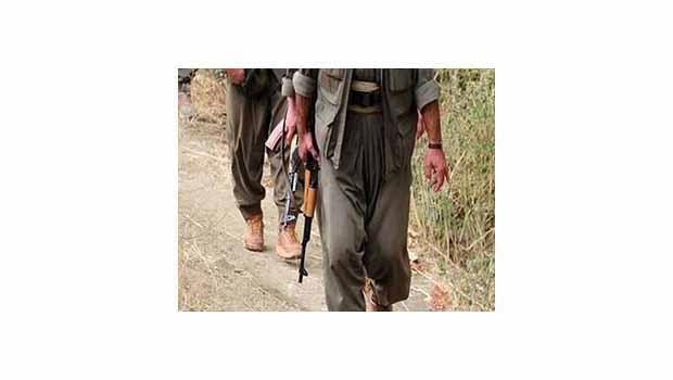PKK Lice'de 4 askeri kaçırdı