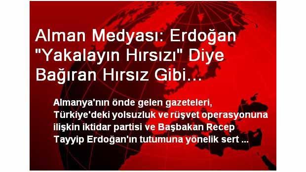 Alman Medyası: Erdoğan