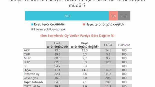 Türkiye'nin IŞİD algısı