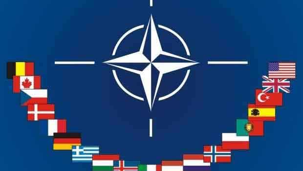 Danimarkalı Milletvekili: Türkiye Nato'dan Çıkarılsın