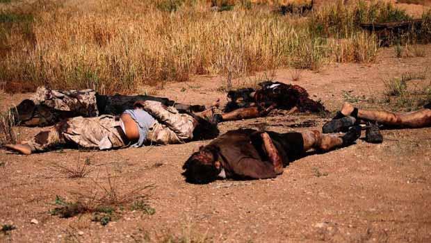 Hasekê kırsalında bulunan IŞİD cesetleri yaşamı tehdit ediyor