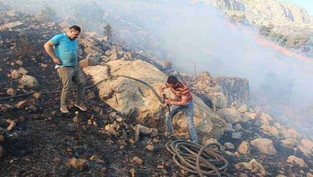 Şırnak'ta bir orman yangını daha