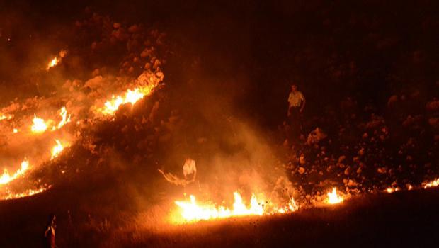 Lice ve Kulp'ta  eş zamanlı orman yangını