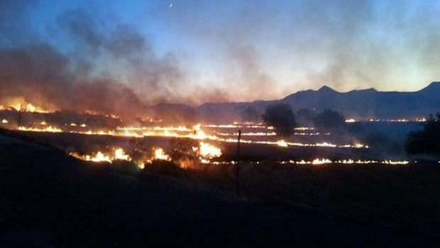 Diyarbakır'daki orman yangınları kontrol altına alındı