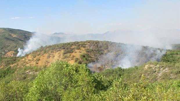 Dersim'de Yangın devam ediyor
