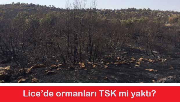 Times TSK'nin Lice'de yangın çıkarttığını ileri sürdü