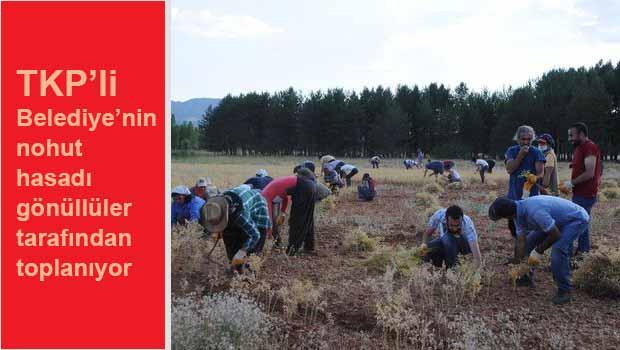 Gönüllüler TKP'li Belediyeyi yalnız bırakmıyor