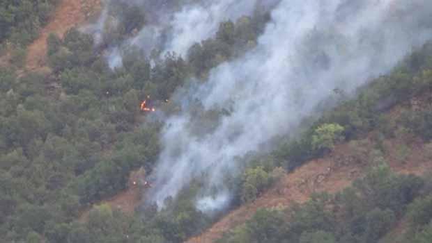 Hakkari'de 5 ayrı noktada Orman yangını