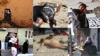 11 ayda yedi bin insan öldüren AKP çözüm istiyor!