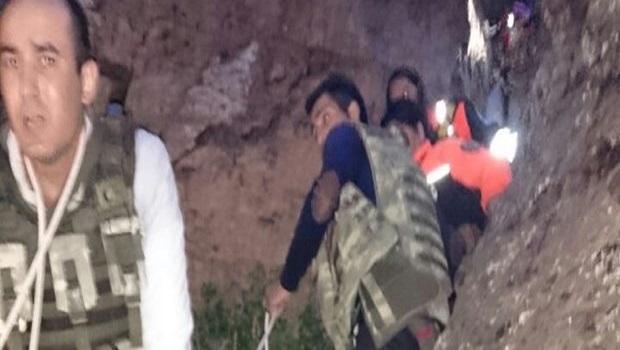 Kars'ta ayı dehşeti: 2 ölü 2 yaralı