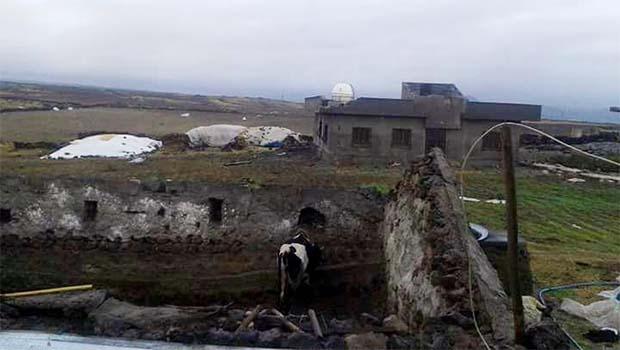 Mardin'de korku dolu anlar! Köye bir taraftan girmiş, diğer ucundan çıkmış!