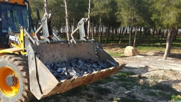 Urfa'da korkutan görüntü