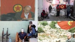 Ciwan Kürd Gençleri Ortak Vatan İçin mi Ölümlere Gönderildi?