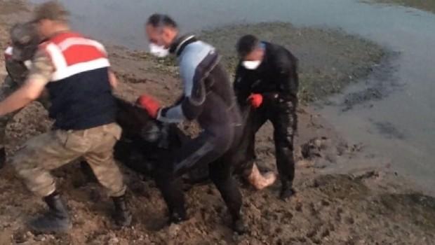 Elazığ'da su yüzeyinde kimliği belirsiz ceset bulundu