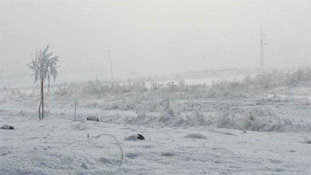 Kürt illerinde Sibirya soğukları