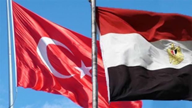 Mısır'dan Türkiye'ye Efrin kınaması: İşgal kabul edilemez!