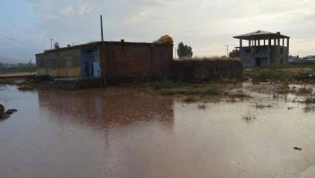 Ahmedê Xanî Türbesi'ni su bastı