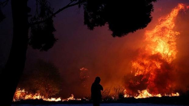 Yunanistan'daki orman yangınlarında ölenler 50 kişiyi aştı