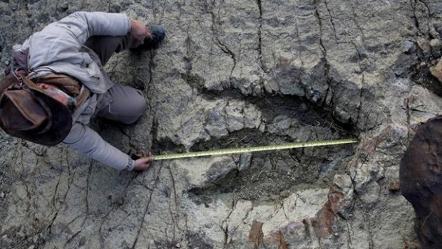 140 milyon yıllık dinozor ayak izi bulundu