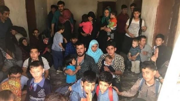 Van'da 299 göçmen yakalandı