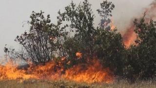 Dersim'den sonra Bingöl: Yangın söndürmeye 'yasaklı bölge' engeli