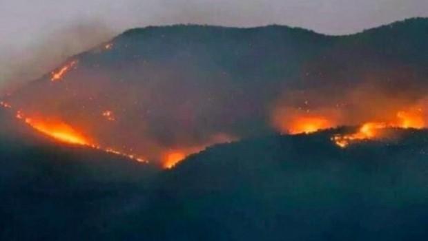 Dersim'deki orman yangını sürüyor