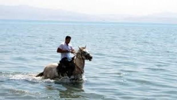 Van Gölü'ne atıyla girip çöp topladı