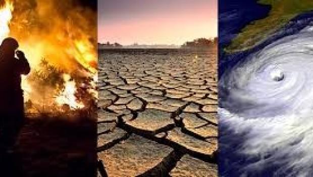 BM: İklim değişikliği bizden daha hızlı