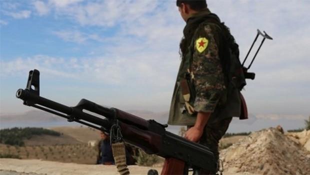 YPG Efrin'de zeytin hırsızlarını hedef aldı!