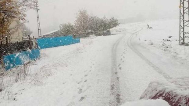 Yılın ilk kar tatili haberi Kürt ilçesinden