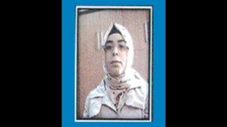 IŞİD'li kadın Şırnak'ta teslim oldu