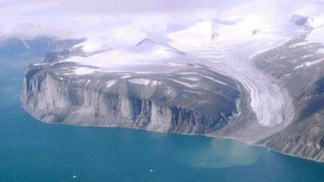 Buzullarda 40 bin yıllık bitki fosilleri bulundu