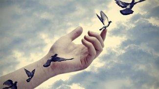 Kuş ölür sen uçuşu hatırla...