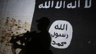 DSG, 150'den fazla IŞİD üyesi ve ailelerini Irak'a teslim etti